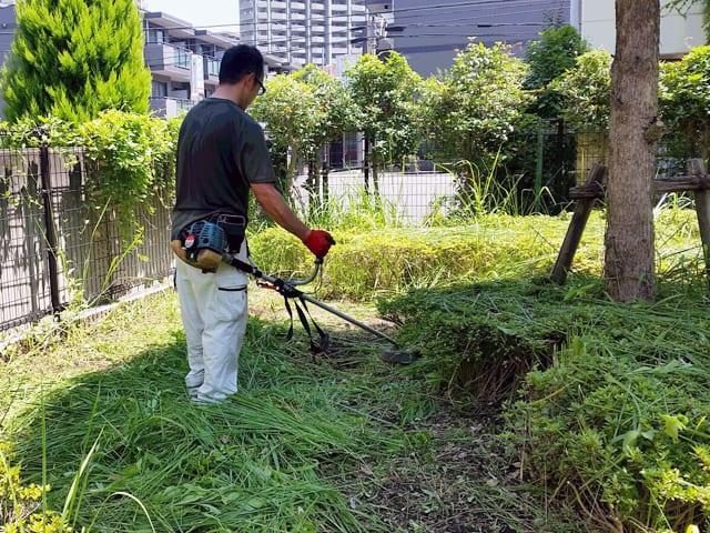賃貸アパート・マンションの管理・メインテナンス、建物まわりの除草・植栽剪定のイメージ画像、除草中の写真