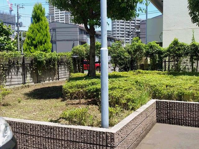 賃貸アパート・マンションの管理・メインテナンス、建物まわりの除草・植栽剪定のイメージ画像、除草後の写真1