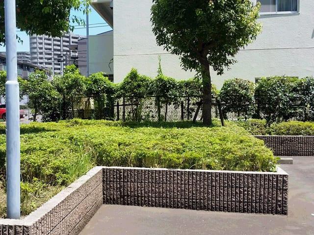 賃貸アパート・マンションの管理・メインテナンス、建物まわりの除草・植栽剪定のイメージ画像、除草後の写真2